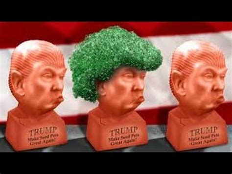 chia pet donald trump!!!! youtube
