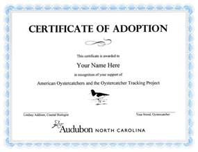 adoption certificate templates crafts birth certificates