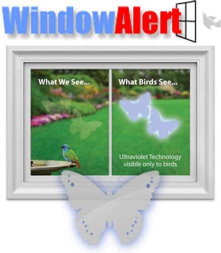 window alert bird collision decals butterfly 8 pack