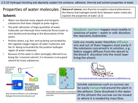 section 2 2 properties of water worksheet answers section 2 2 properties of water worksheet answers 28