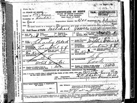 South Carolina Birth Records Documenting A South Carolina Birth Iaam Center For