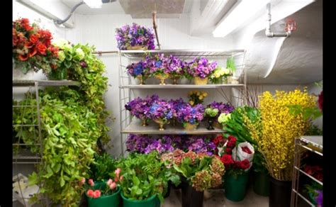 White House Florist by Inside The White House Abode