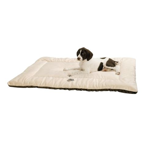 plush dog beds ollydog plush dog bed 22x36 quot large 97267 save 54