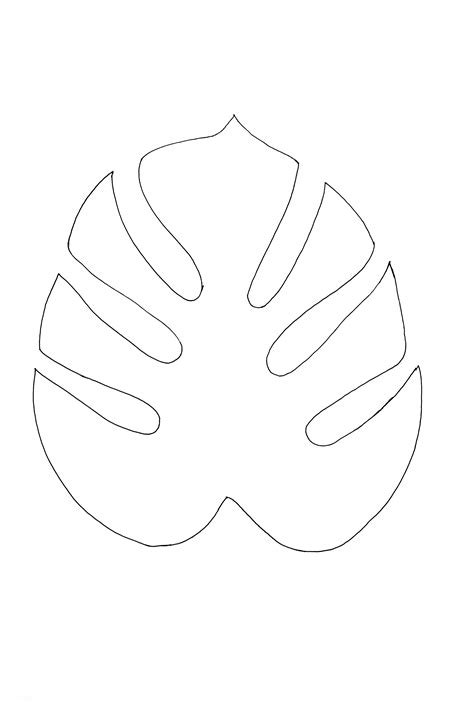 pattern outline monstera outline jpg 3072 215 4560 printables and designs
