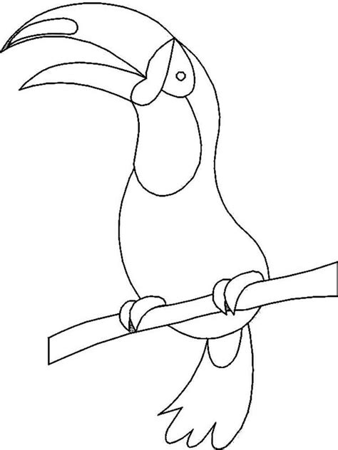 coloring page of a toucan bird toucan coloring pages download and print toucan coloring