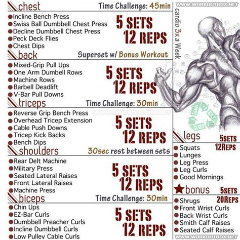 best routine to get ripped best 25 workouts to get ripped ideas on diet