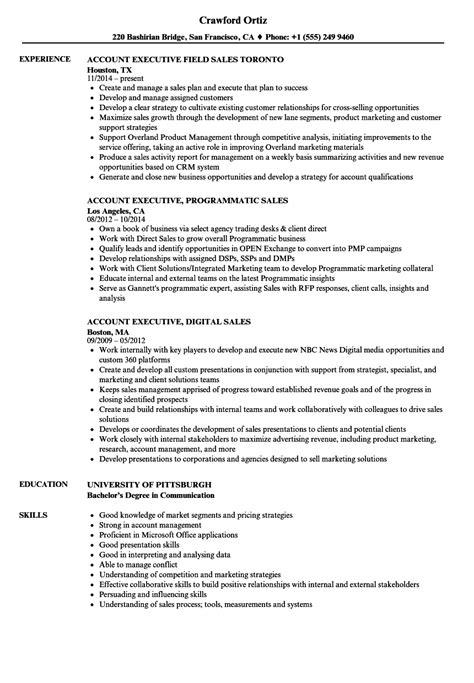 sle executive resume template sales executive account executive resume sles