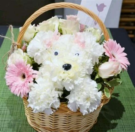 puppy bouquet 1000 images about carnation puppies on floral arrangements puppys and