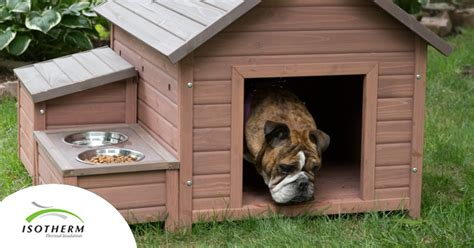 best way to insulate a dog house diy insulation for a dog kennel isotherm thermal insulation