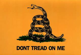 on me oh say what is freedom remember this flag quot don t tread