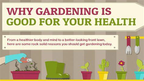 Health Benefits Of Gardening Infographic Benefits Of Vegetable Gardening