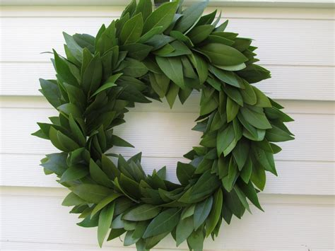 Bayleaf Wreath Fresh Bay Leaf Wreath 15 For Home Decor Cooking Herbs