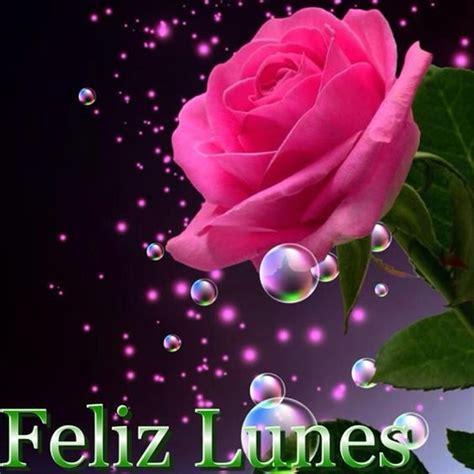 imagenes feliz lunes linda rosa para desear un feliz lunes im 225 genes y