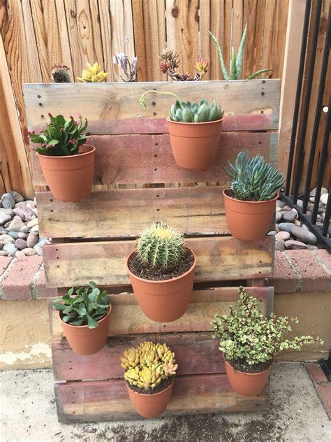 succulent garden home depot sells pallets