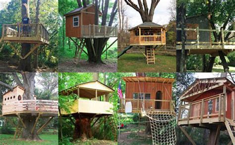 Custom Home Building Plans gallery of tree house pictures projects and options
