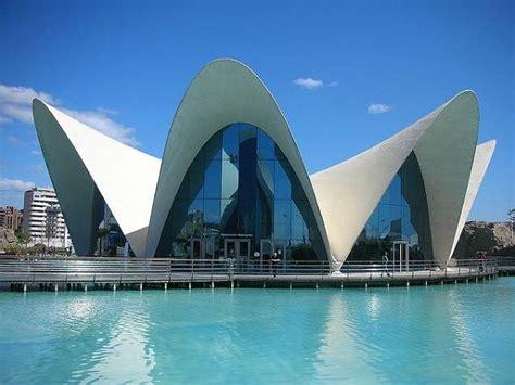 entradas oceanografic y bioparc oceanogr 224 fic de valencia hotel entradas