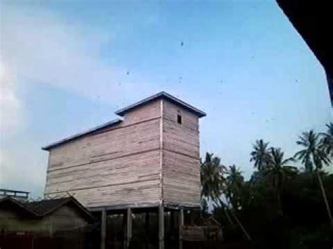 membuat rumah walet dari kayu desain rumah walet dari kayu superwalet