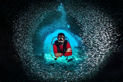 fascinating facts about scuba diving you probably didn t know