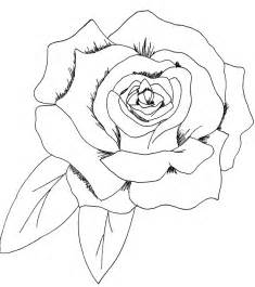 commission a simple rose by saribrum on deviantart
