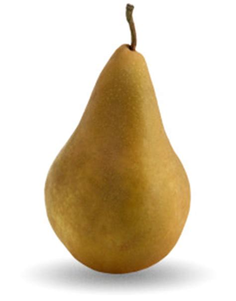 12 best images about pear pears download images photos and pictures