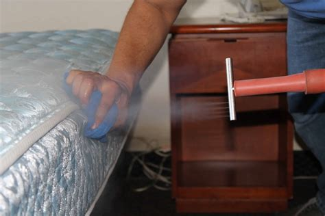 cimici da letto rimedi punture da cimici da letto scopri tutto sul parassita dei