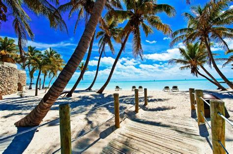 best florida key 8 reasons why you should visit the florida