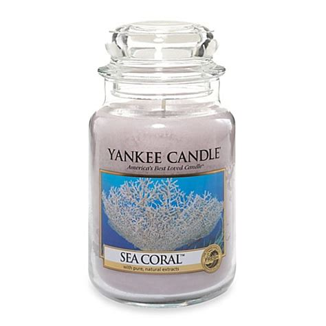 bed bath and beyond yankee candle yankee candle 174 sea coral scented candles bed bath beyond