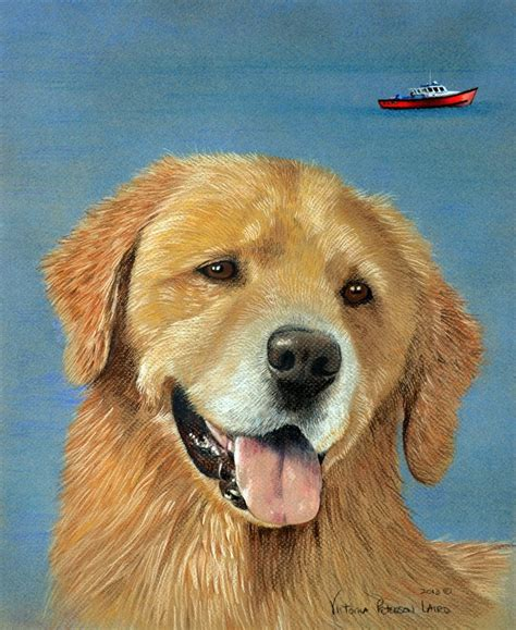 golden retriever vic portraits pet portraits by peterson laird