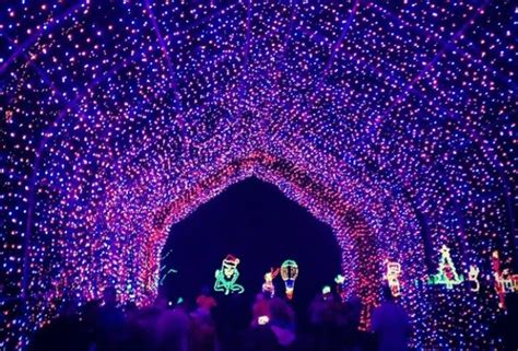 Shady Brook Farms Light Show Light It Up The Best Holiday Light Shows In Philly And