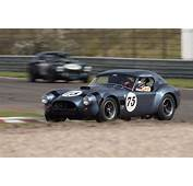 AC Shelby Cobra  Chassis CSX2174 Driver Hans