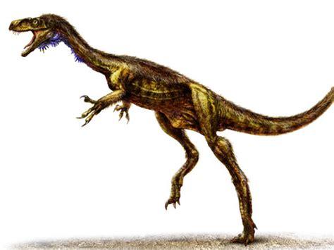 "fast, ""nasty"" little dinosaur discovered"