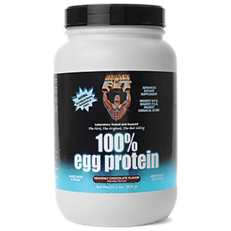100 egg protein heavenly chocolate 2 pound powder by healthy n fit nutritionals at the