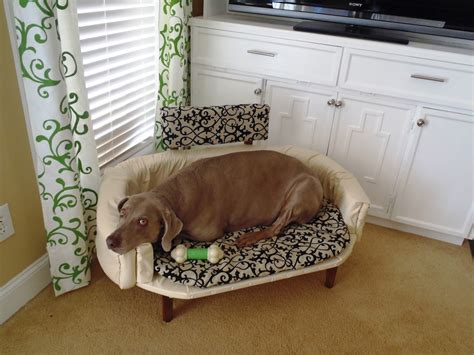 elevated dog bed diy elevated dog bed 94 pvc dog bed best elevated dog bed