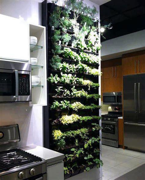 giardino verticale in casa giardino verticale interno 25 idee per pareti verdi in