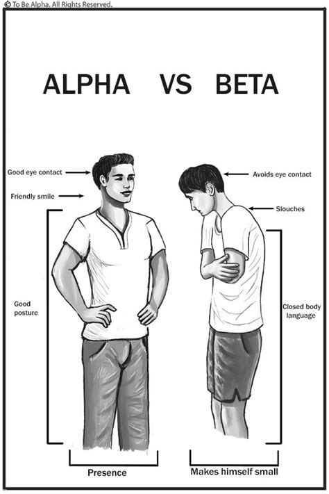 alpha real best 25 alpha ideas on alpha quotes teaching mens fashion and