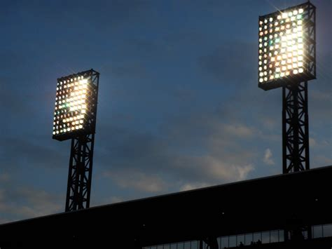 Field Lights by Capl Field Lights Large