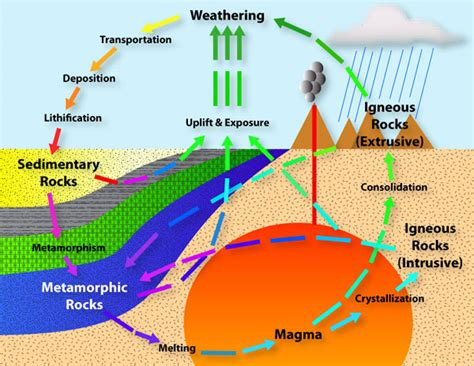 diagram of how sedimentary rocks are formed copy of quot rock cycle quot thinglink