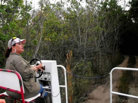 everglades boat rentals ochopee fl airboat ride picture of wooten s everglades airboat tour