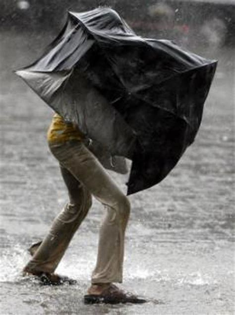 umbrella in the wind broken umbrella broken hearts books 7 things to remember before daring the mumbai monsoons
