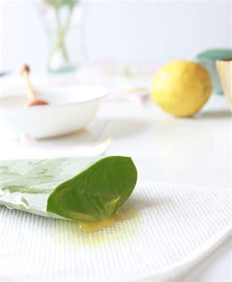 Masker Aloe Vera Gel how to make aloe vera gel with lemon juice mask