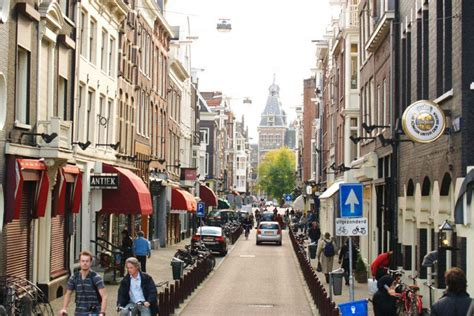 best plant store in amsterdam amsterdam shopping shopping reviews by 10best