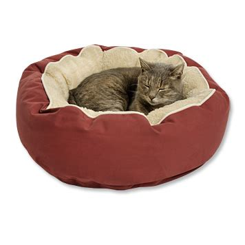 Cat Mattress by Luxury Cat Bed Bed Orvis Uk