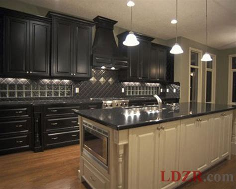 Black Cabinets In Kitchen Traditional Black Kitchen Cabinets Home Design And Ideas