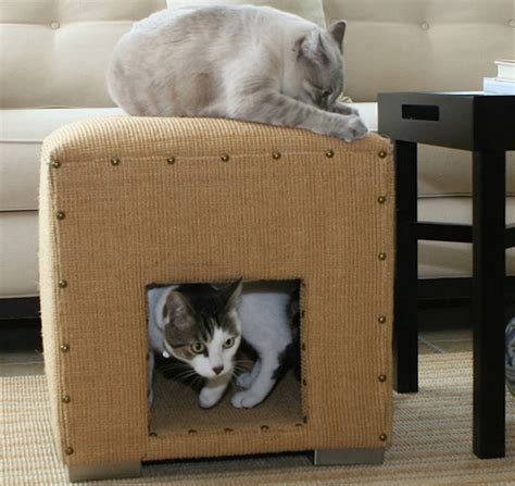 Kuas Cat Cisal 25 win a cat scratch cube for your s claws popsugar pets