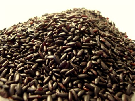 black rice calories health benefits and nutrition of black rice