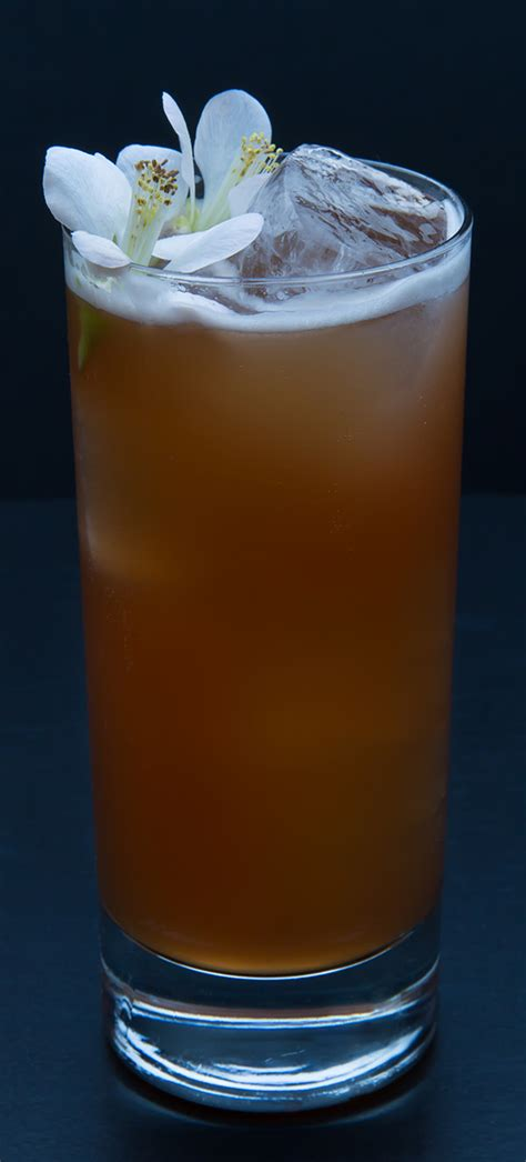 best singapore sling in singapore singapore sling cocktail recipe