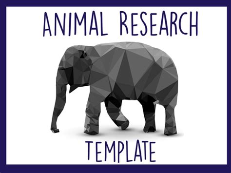 animal research for template shira s shop teaching resources tes