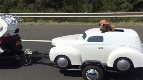 car dogs trailer a driving mini car or it s just a trailer anyway it looks awesome