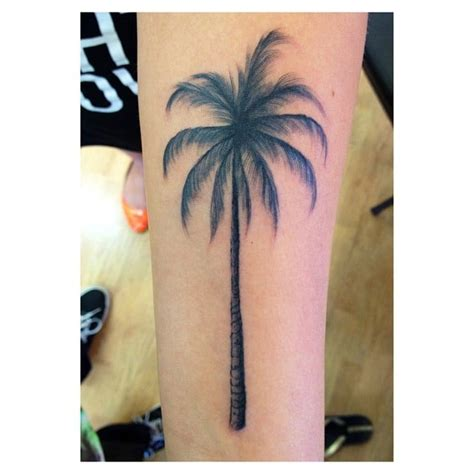 mid pacific tattoo palm tree by anthony yelp