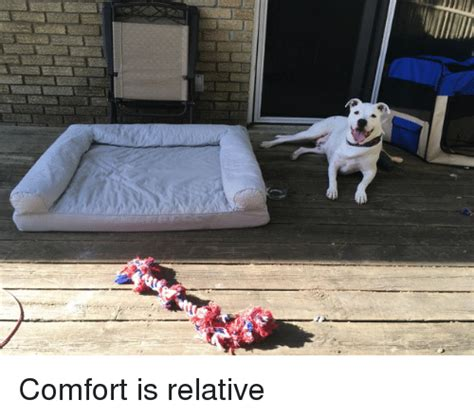 relative comfort comfort is relative comforter meme on sizzle